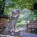 Statue in the rain