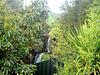 Waterfall Above Jones Landing