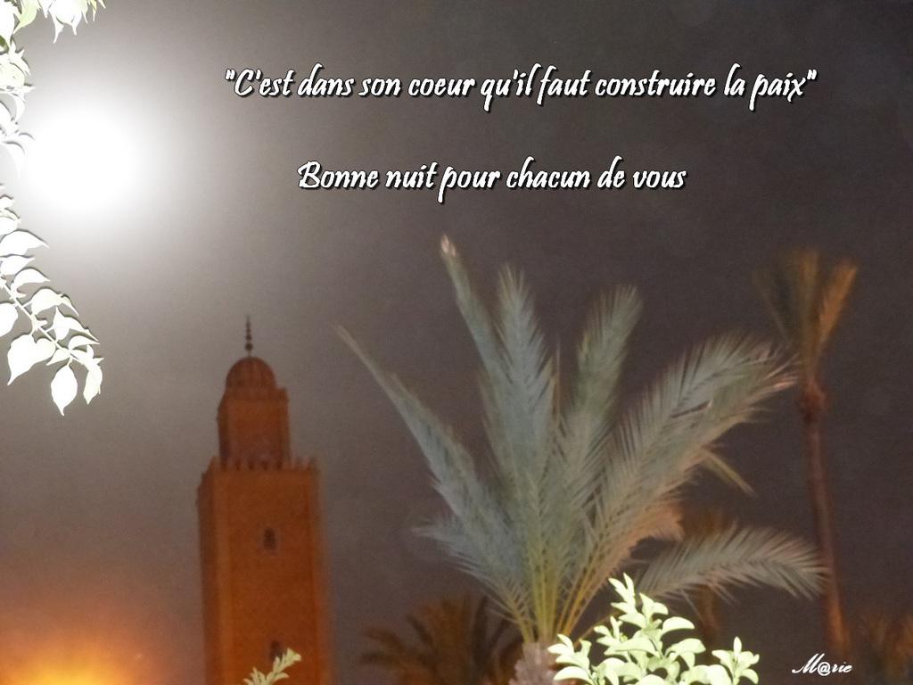 Une belle  nuit à Marrakech