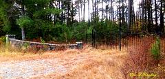 Gate standing sentinel