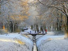 Winter Symfony