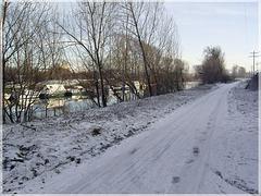 Am Neckar bei Untereisesheim