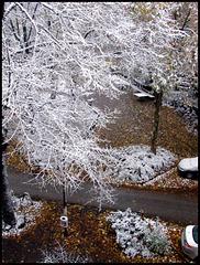 Erster Schnee Winter 2016-17