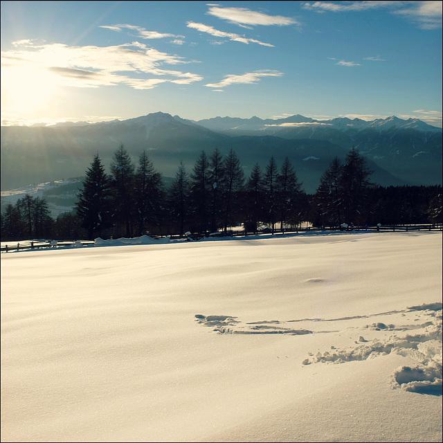 Winter Brightness.