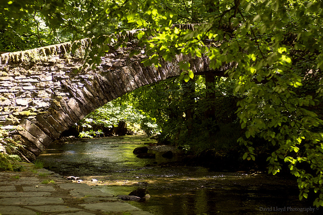 The River Rothay, Ambleside.