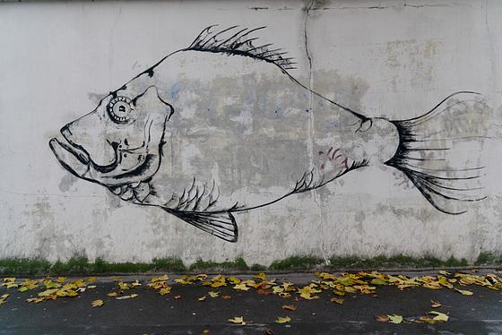 Poisson mural
