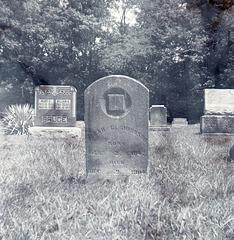 Sarah G. Johnson - Died December 21st, 1904