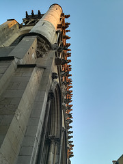 The Many Faces (Dijon Notre Dame)
