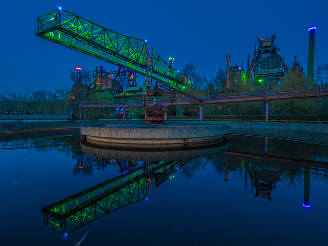 Green Croc at Blue Hour (120°)