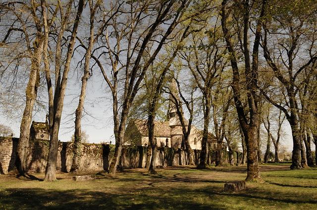 Saulieu, Sainte Andoche