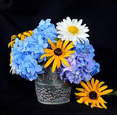 my summer bouquet