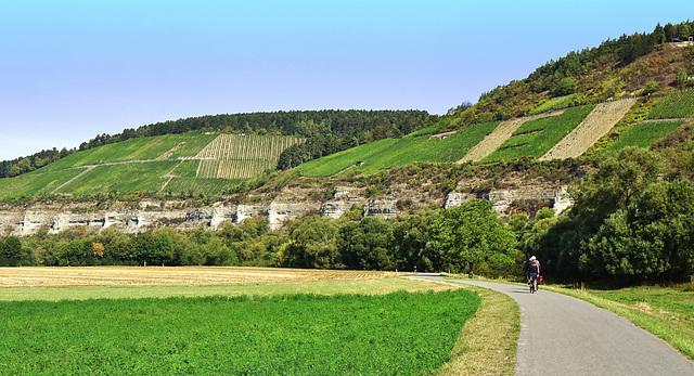Mächtige Muschelkalkbastionen im Maintal - Impressive shell limestone bastions in the river Main valley