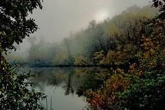 Nebellandschaft - Misty landscape