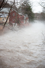 Fog on the Mill River