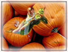 Belle soirée et bon premier Novembre !