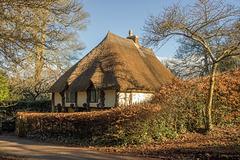 Thatch Cottage in Winter Sun