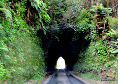 Road Tunnel near Okau