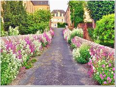 Flower alley - H.A.N.W.E.