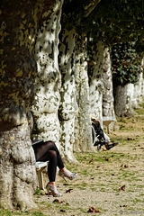 Herbst in Bad Ems (© Buelipix)