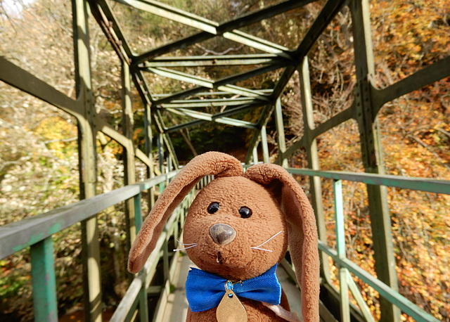 Another autumn bridge!