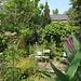 The SLBI garden