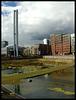 """""""Biotop"""" in der Hafencity"""