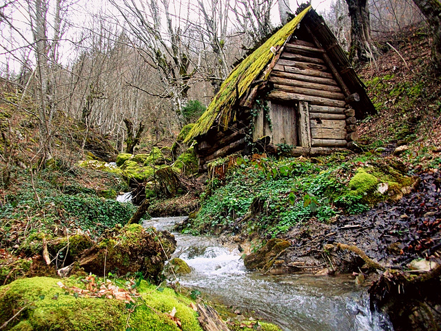 Derelict water mill