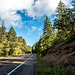 Driving to the crest of the Sandia mountains4