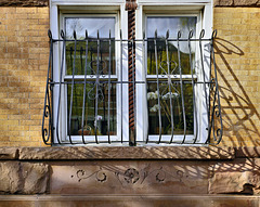 Orchids in the Window – Bergen Street near Flatbush Avenue, Park Slope, Brooklyn, New York