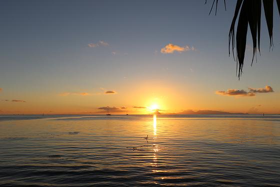 30 décembre au soir, lever et coucher de soleil du 31    PIP