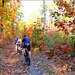 Bicycle riders in the Forest...