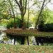Herbstimpression im Schlossgarten