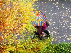 O un ombrello di colori