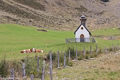 Kapelle und Zaun - Chapel and fence