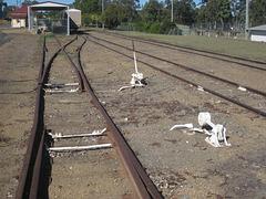 Mundubbera Station 0718 3813