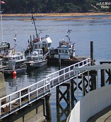 Dockside at Chemainus