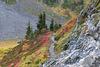 Chain Lakes Trail