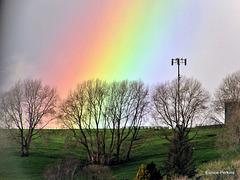 Under a Rainbow