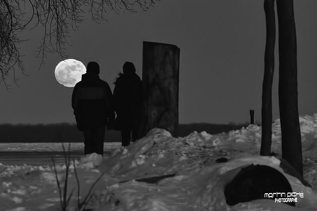 Pleine lune du 24 janvier 2016