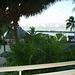 View from hotel veranda, Papeete, January 12