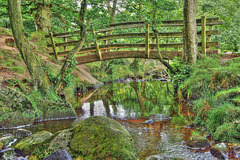 Burbage Brook  /  Sept 2015