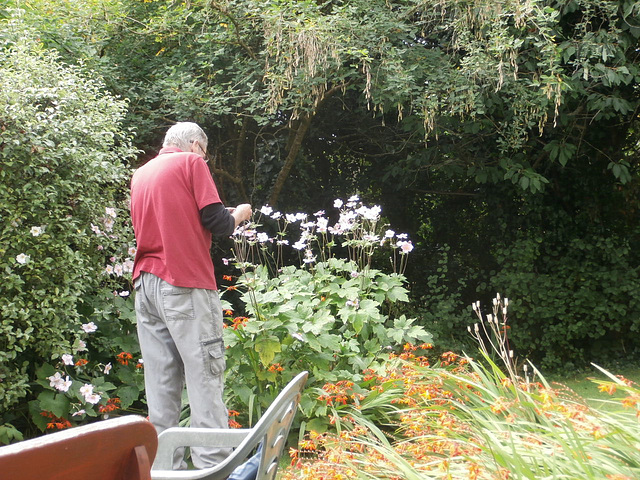 Browsing in the garden