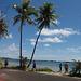 Raiatea, the Sacred Island, January 22