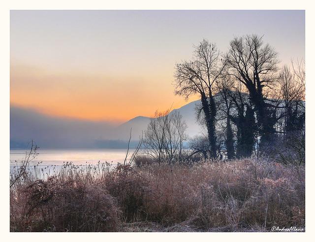Nebbia e brina sul lago piccolo - Avigliana