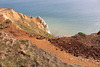 A lot of geology - Seaford Head - 20.4.2016
