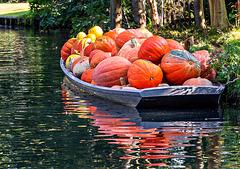 Have a pumpkin!