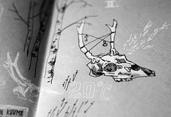 Sketchbook skull