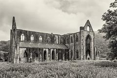 Tintern Abbey (3xPiP)