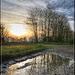 Riflessi mattutini - Morning reflections