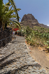Canary Islands - Tenerife - Masca